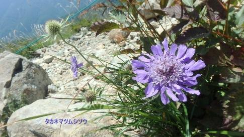 プライベート(唐松岳) 076-002