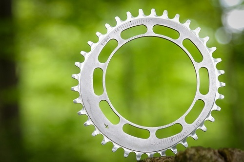 Spreng-Reng-chainring-dominant-leg-not-oval-elliptical-q.jpg