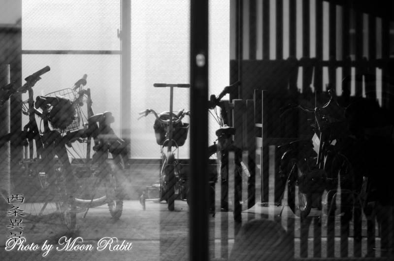 自転車 愛媛県西条市東新町