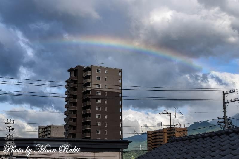 虹 愛媛県西条市神拝
