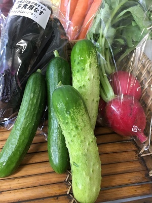 2018 6野菜セット④