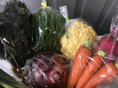 20186野菜セット③