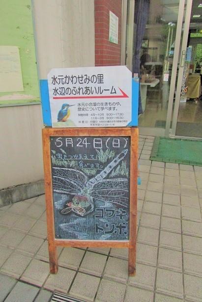 mizumoto180624-116.jpg