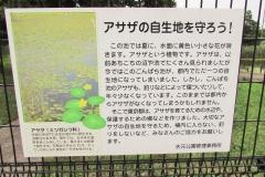 mizumoto180624-202.jpg