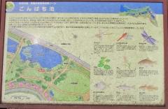 mizumoto180624-203.jpg