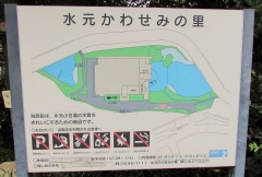 mizumoto180729-201.jpg