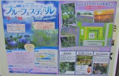 shoubu180602-202.jpg