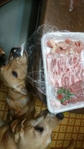 お肉 オビ