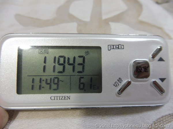 P1060124