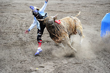 blog (6x4@300) Yoko 52 Last Stand Rodeo, Bull Riding 2, Ryan O'Masters (NS Hermiston, OR), Bull Fighters_DSC1827-5.25.18.(1).jpg