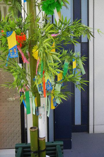 blog CP4 Ginza, Tanabata_DSCN9282-7.4.18.jpg