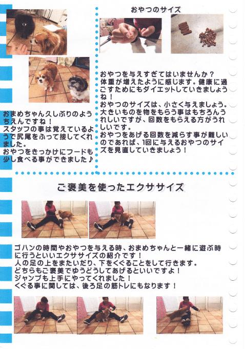ブログIMG (2)