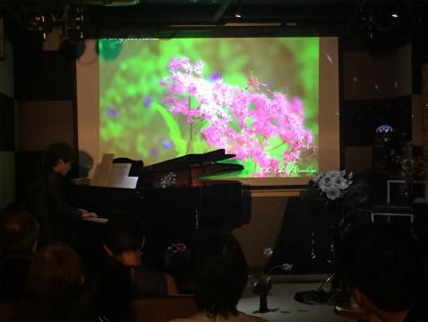 ブログピアノ花3
