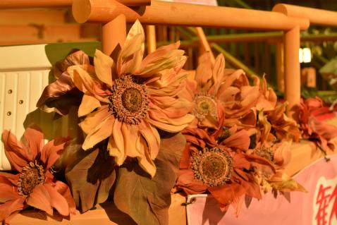 ブログステージの花12