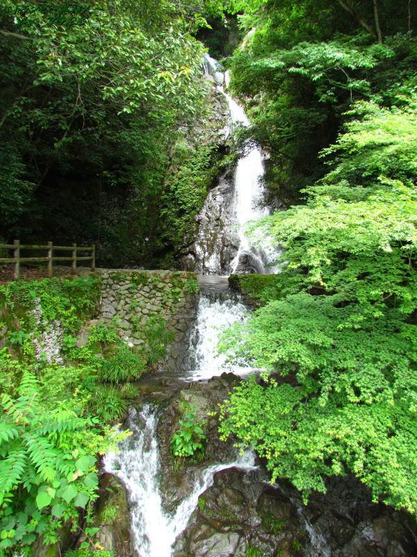 6301沢柳の滝180610