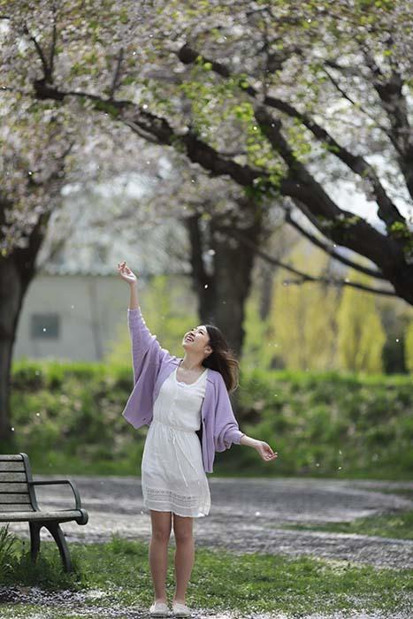 未来:桜散る2