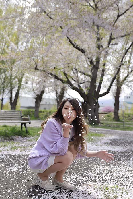 未来:桜吹く