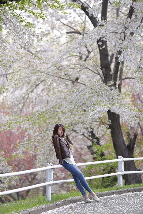 未来:桜バック10
