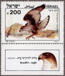 イスラエル・ボネリークマタカ
