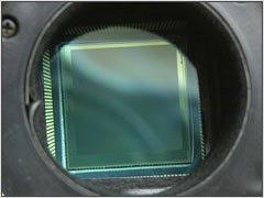 protosensor.jpg