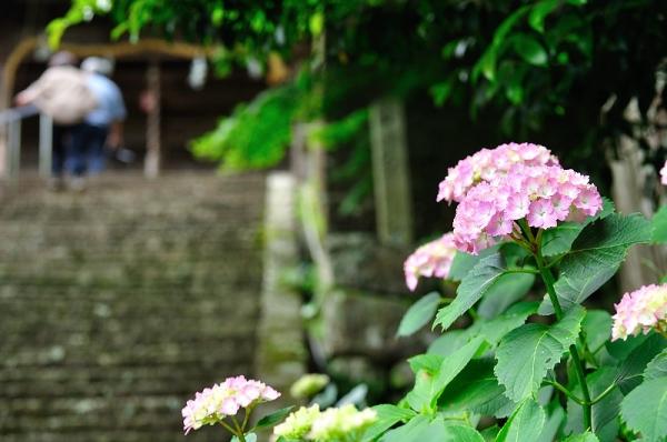 6惣河内神社180610