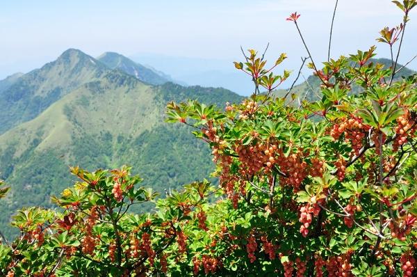 3石鎚山180625