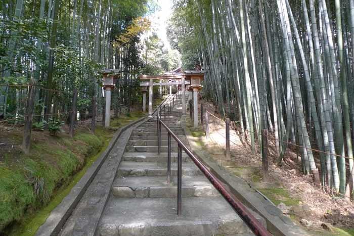 奈良の神社、仏閣   大神神社  43 (久延彦神社)
