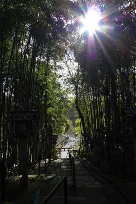 奈良の神社、仏閣   大神神社  44 (久延彦神社)