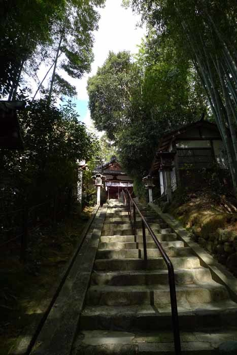 奈良の神社、仏閣   大神神社  46 (久延彦神社)