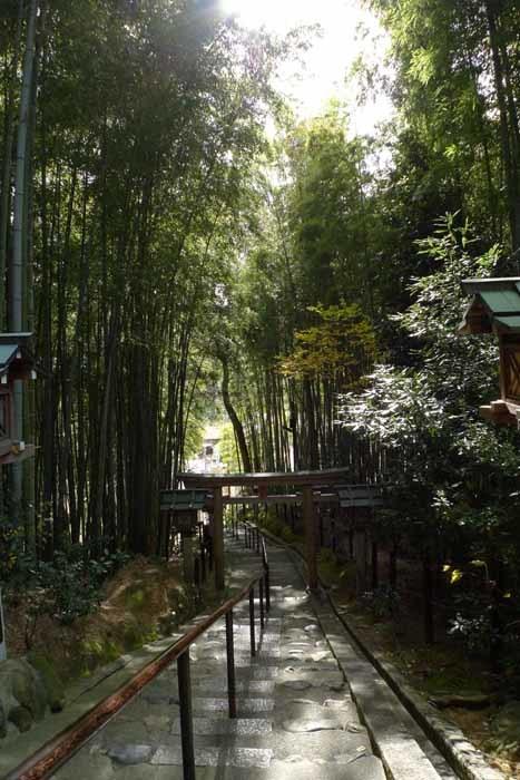 奈良の神社、仏閣   大神神社  47 (久延彦神社)