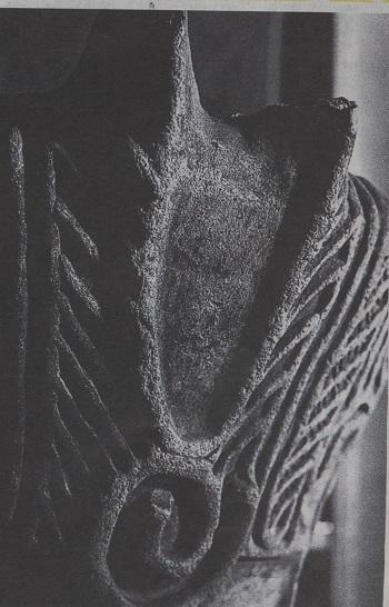 イメージ (1170)