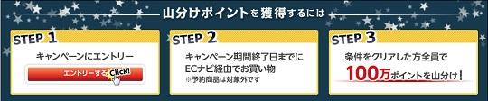 201804_ECナ_100万ポイント山分け_01
