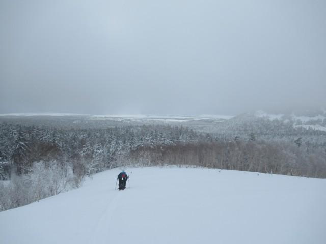 1月4日 450mくらいで樹林帯終わり