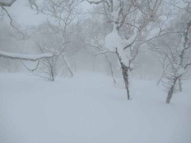 1月8日 ちょいガスだけど快適