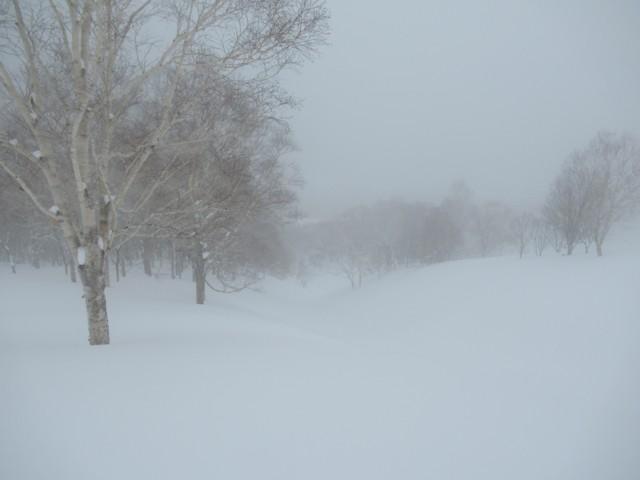 1月8日 霞んでるけど静かで良い