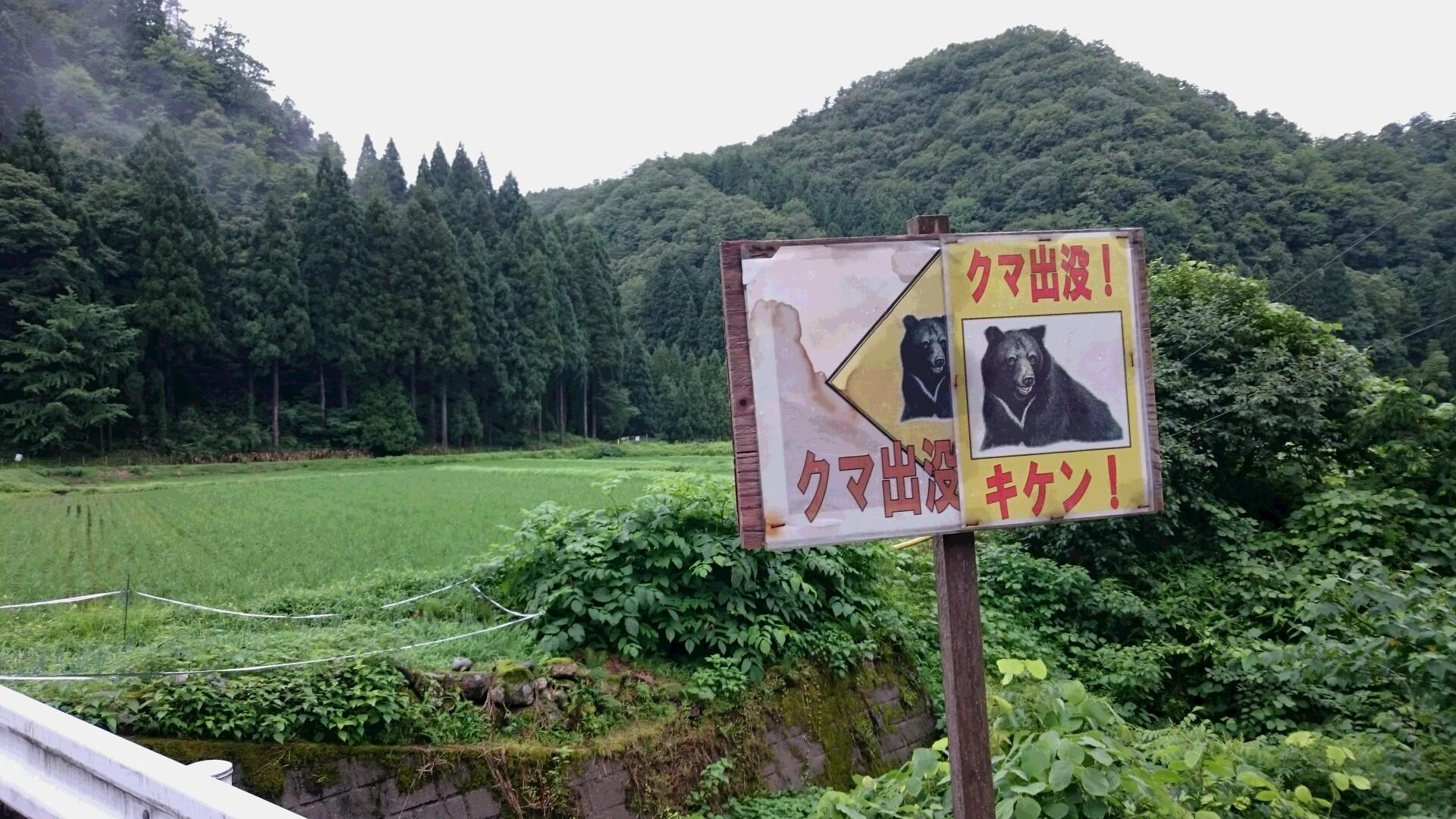 moblog_d74fa0a7.jpg