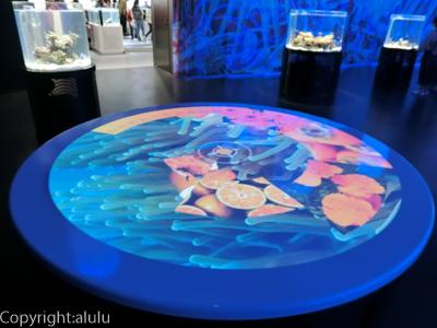 ニフレル 水族館