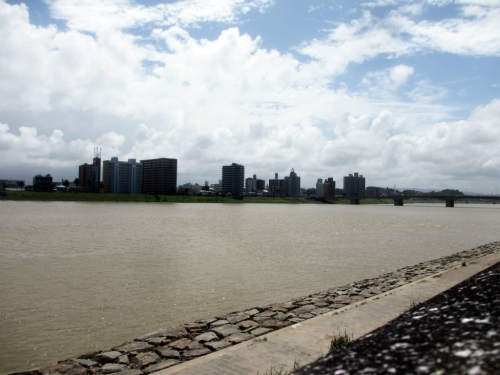 大淀川の河畔橘公園