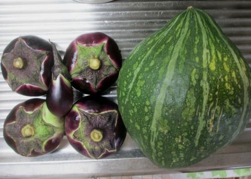 まんじゅう茄子と小茄子とロロン南瓜